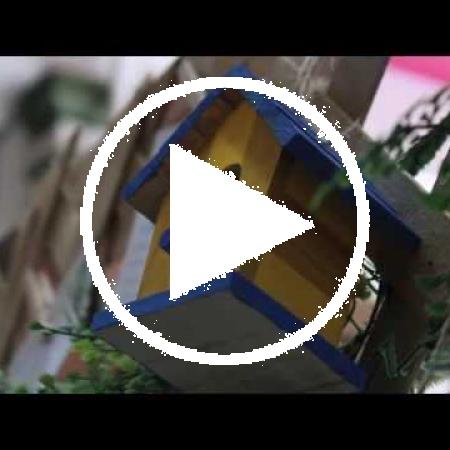 Manifestival du logement dans Villeray